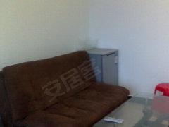 整租,金虹一号,1室1厅1卫,56平米