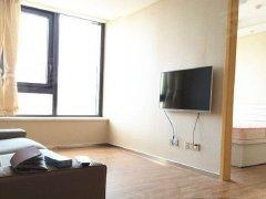 整租,滨湖新城,1室1厅1卫,65平米