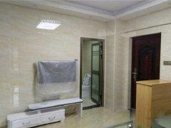 莲东 繁华地段 单身公寓精装拎包入住