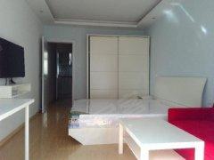 精装一房一厅,面积超大,采光好,性价比高,近世纪大道2469