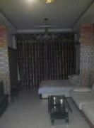 急租自由港 精装一室 黄金地段 紧邻南三条乐汇城 照片真实