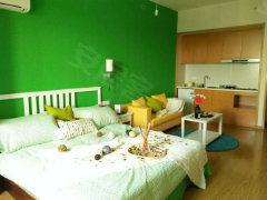 整租,新明半岛,1室1厅1卫,55平米
