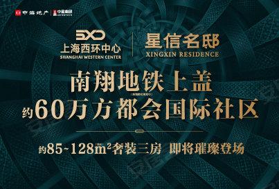 [嘉定-南翔]上海西环中心·星信名邸