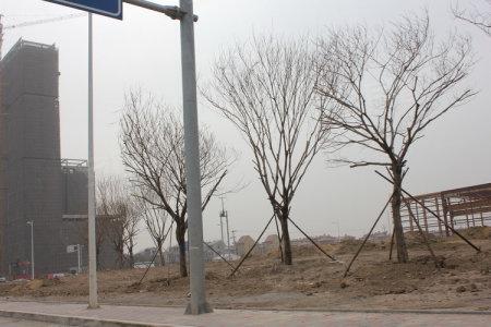 [邯郸县]圣水湖畔